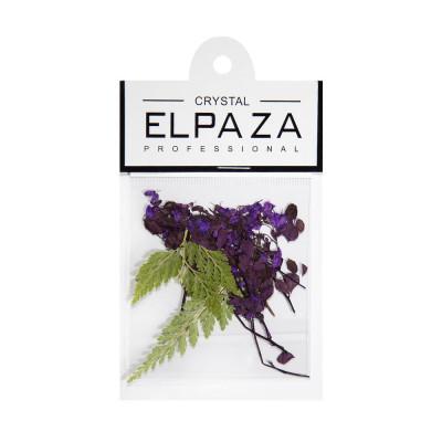 Elpaza, Сухоцветы для дизайна ногтей (фиолетовый)