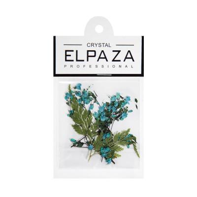 Elpaza, Сухоцветы для дизайна ногтей (бирюзовый)